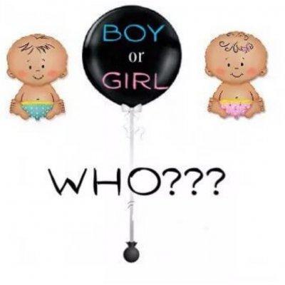 Арт.337 Шар Сюрприз  «Мальчик или Девочка»  90 см.